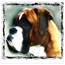 Boxer Dog Framed Print