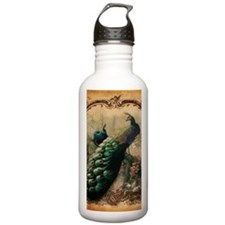 romantic paris vintage Water Bottle