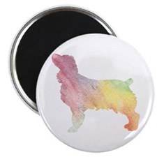 WaterColorRainbow Magnets
