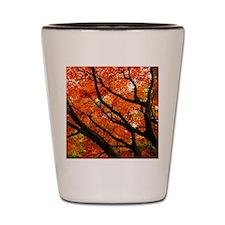 Autumn oak Shot Glass