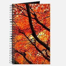 Autumn oak Journal