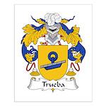 Trueba Family Crest Small Poster