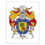Tena Family Crest Small Poster