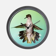 Female Hummingbird Wall Clock