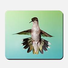 Female Hummingbird Mousepad