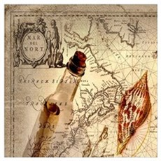 vintage nautical seashells sailor Poster