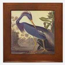 Louisiana Heron Framed Tile