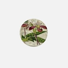 vintage french botanical orchid Mini Button