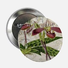 "vintage french botanical orchid 2.25"" Button"