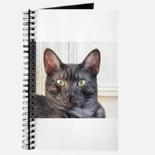 egyptian mau Journal