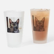 egyptian mau Drinking Glass