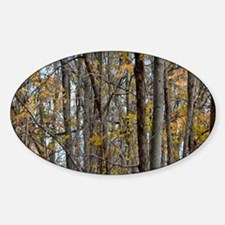 forest trees Camo Camouflag Decal