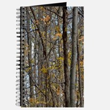 Autmn trees Camo Camouflage Journal