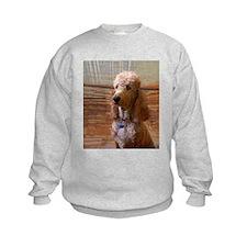 Pets poodle Sweatshirt