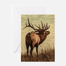rustic western wild elk Greeting Cards