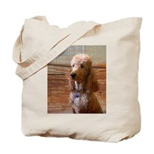 Cool Red poodle Tote Bag