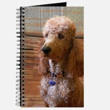 Cute Red poodle Journal