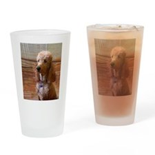 Cute Red poodle Drinking Glass