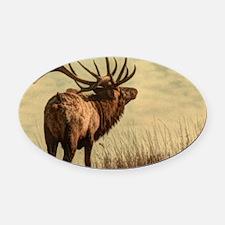 rustic western wild elk Oval Car Magnet