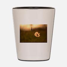 Dream Flower Shot Glass