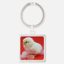 chicks in red Square Keychain