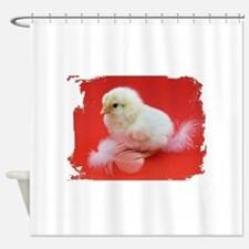 chicks in red Shower Curtain