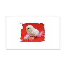 chicks in red Car Magnet 20 x 12