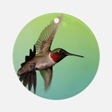 Ruby-Throated Hummingbird Round Ornament