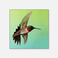 "Ruby-Throated Hummingbird Square Sticker 3"" x 3"""