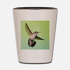 Female Hummingbird Shot Glass