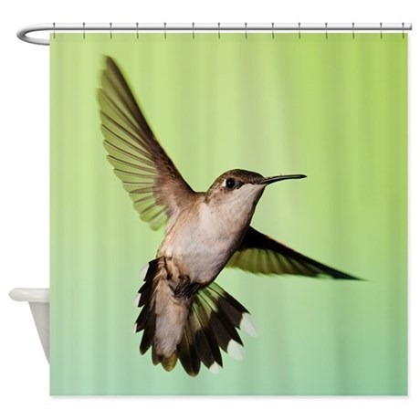 Female Hummingbird Shower Curtain