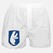 Polar Shield Boxer Shorts