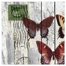 shabby chic french butterfly Canvas Art
