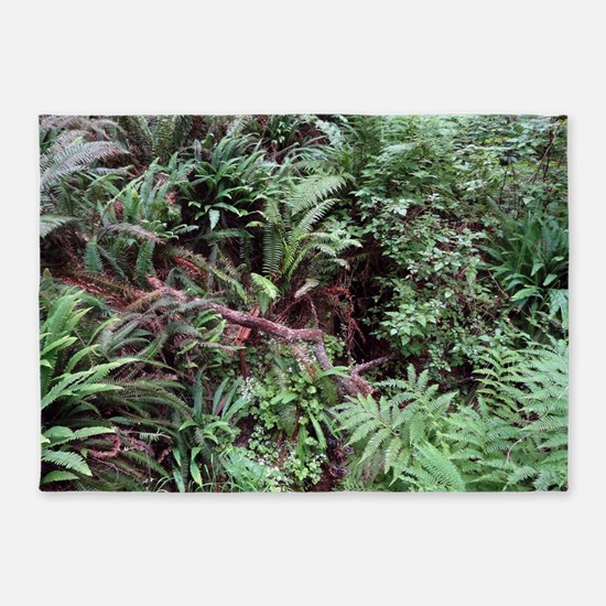 Redwood Rainforest Ferns 5'x7'Area Rug