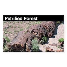 Petrified Forest National Par Sticker (Rectangular