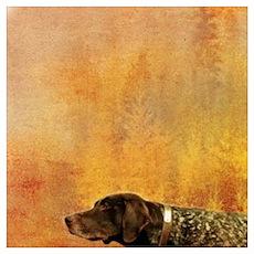 vintage hunting pointer dog Poster