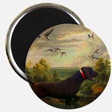 vintage hunting pointer dog Magnet