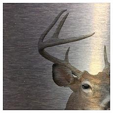 grunge texture western deer Poster