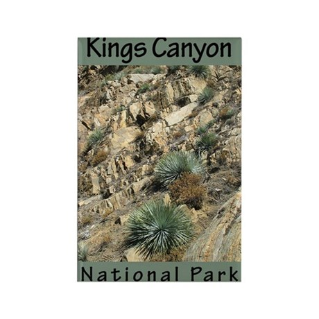 Kings Canyon National Park (V Rectangle Magnet