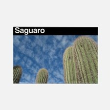 Saguaro NP Rectangle Magnet