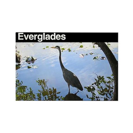 Everglades National Park Rectangle Magnet