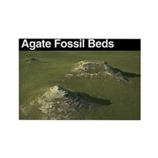 Agate Fossil Beds NM Rectangle Magnet