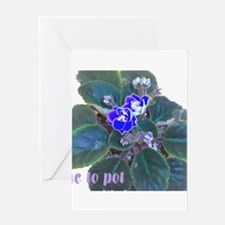 Gone to Pot African Violets Greetin Greeting Cards
