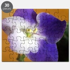 Park Avenue Blue 2 Puzzle