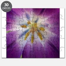 tulip 4a square.jpg Puzzle