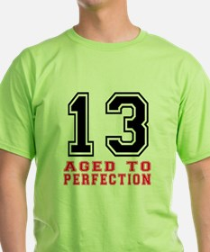 13 Aged To Perfection Birthday Desig T-Shirt