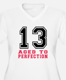 13 Aged To Perfec T-Shirt