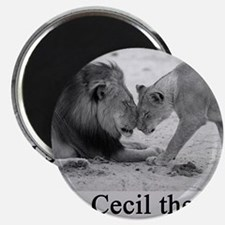 R.I.P. Cecil the Lion Magnet