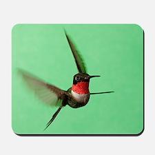 Ruby-Throated Hummingbird Mousepad