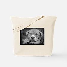 Unique Pit bull dog breed Tote Bag